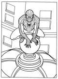 Spiderman sul tetto