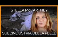 Stella McCartney dice no a pelliccia, pelle e cuoio e ci spiega i motivi [VIDEO]