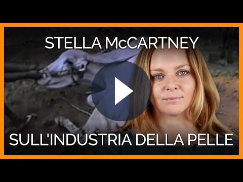 Stella McCartney si schiera contro le pellicce [VIDEO]