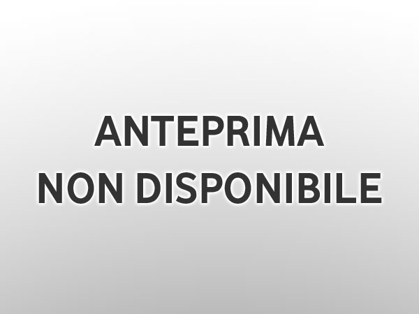Make up occhi leopardato per la notte di Capodanno