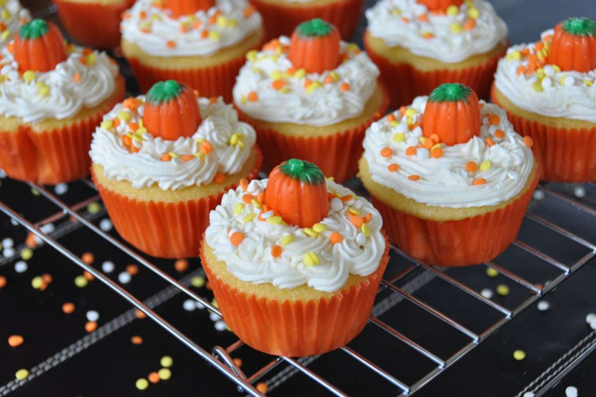 Cupcakes zucca