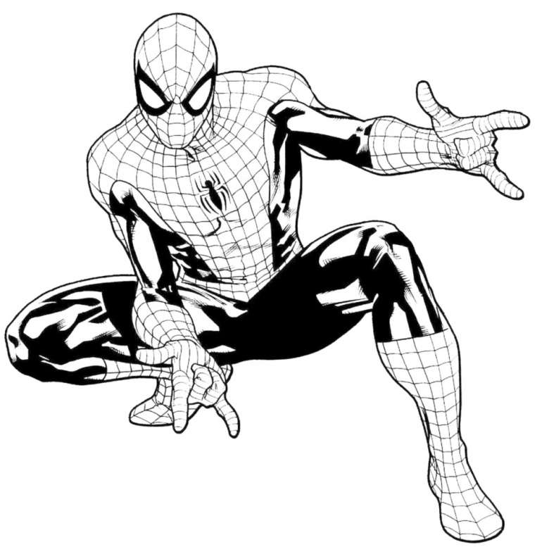 Immagine spiderman da colorare for Spiderman disegni da stampare