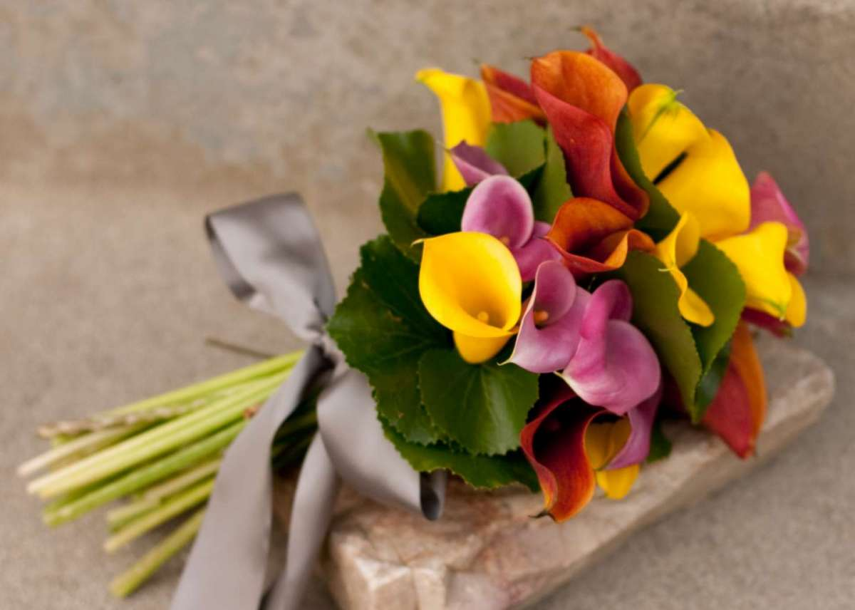 Bouquet multicolore con calle